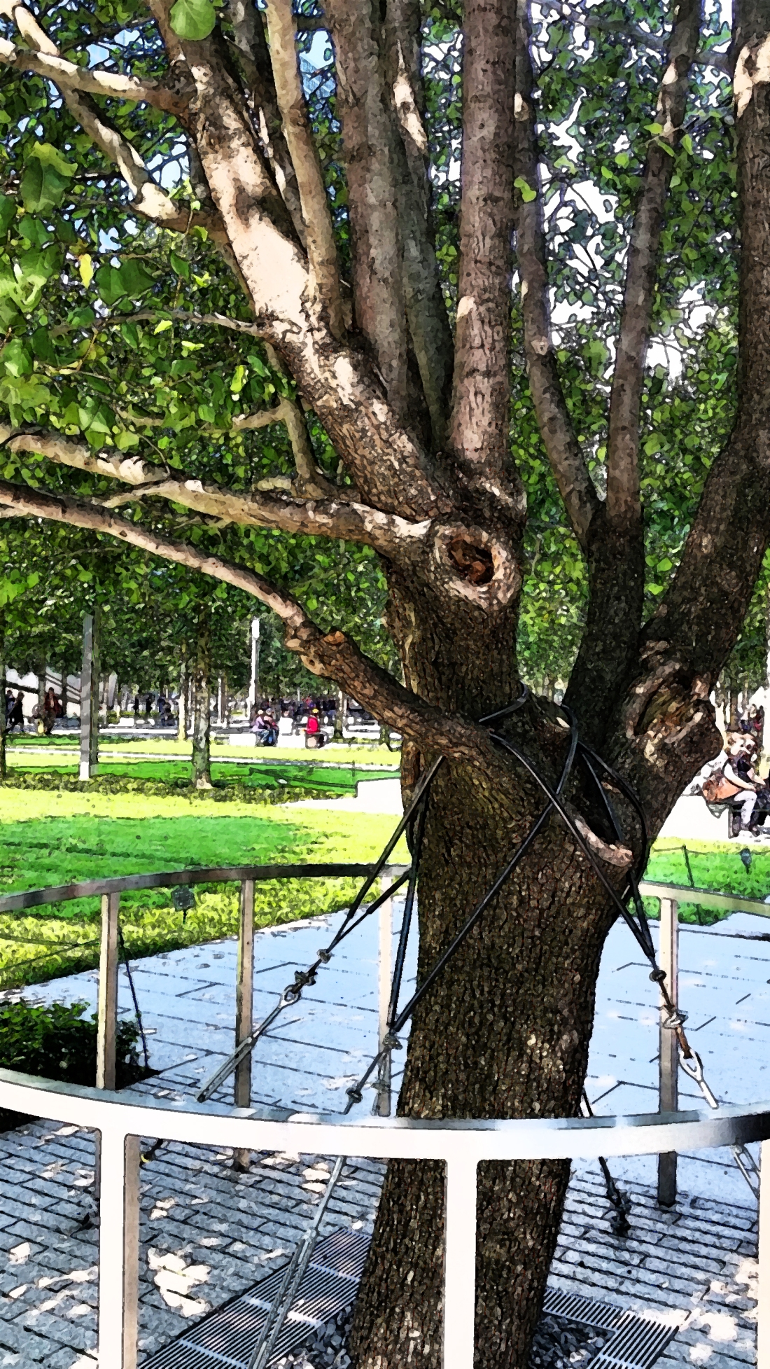 The Survivor Tree, Ground Zero