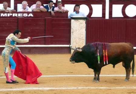 Toros, Source: https://www.flickr.com/photos/jfuego/sets/72157603923077004/