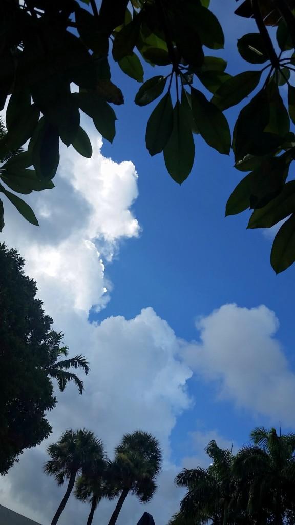 Skyview. Boca Raton, Florida. Shot with a Samsung Galaxy S 5.