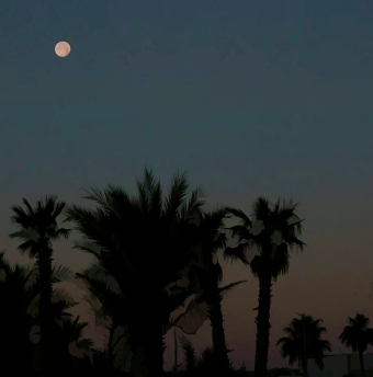Moonlight in Mexico. Shot with a Canon 70D.